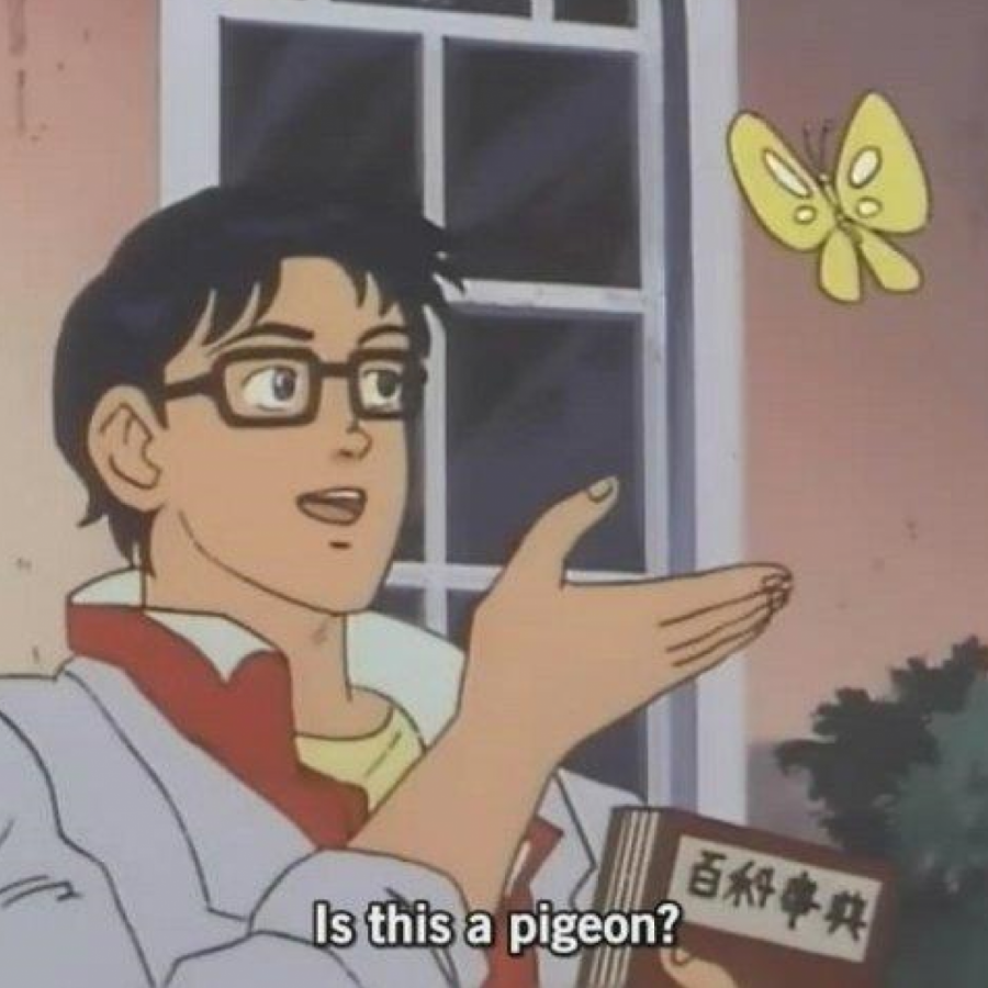 Is This a Pigeon?