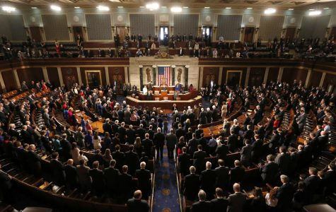 The Leek: Congress Panics After They Accidently Legalize Murder