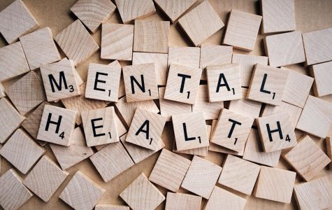 Mental Health Days